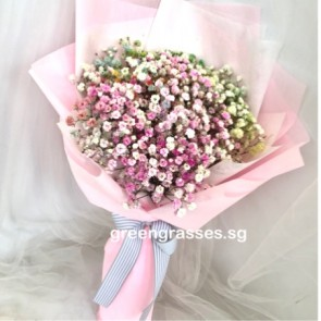 HB05582-Rainbow BB-Baby's Breath 彩虹满天星