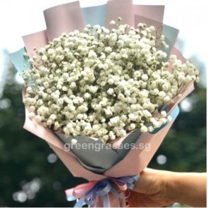 HB06044-KW-Wh BB-Baby's Breath Hand Bouquet
