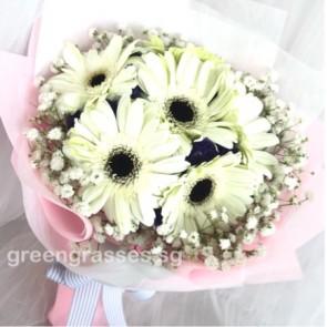 HB06580-LLGRW-6 Wh Gerbera hand bouquet