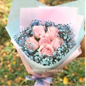 HB07082-GLSW-6 Pk Rose+Blue BB