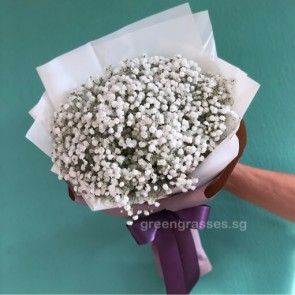 HB07086-KW-Wh BB Wh Baby's Breath hand bouquet