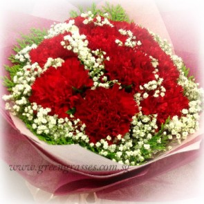 HB07324-LLGRW-9 Red Carnations hand bouquet