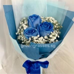 HB07529-LGRW-3 Ecuador Blue Rose