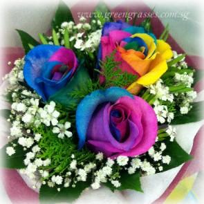 HB08034-LLGRW-3 Ecuador Rainbow Rose