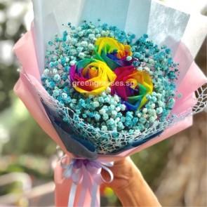 HB08037-GLSW-3 Ecuador Rainbow Rose