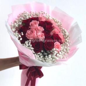 HB10234-21 Rose(Red & Pk)