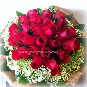 HB11517-LLGRW-24 Red Rose