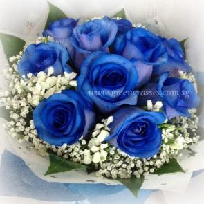 HB13517-LLGRW-10 Ecuador Blue Rose