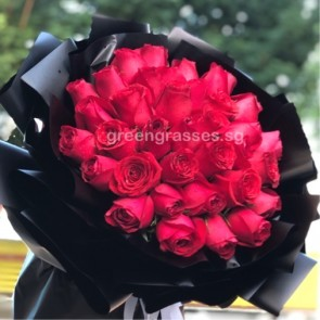 HB13608-PRW-36 Red Rose