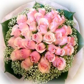 HB13620-LGRW-36 Pink Rose