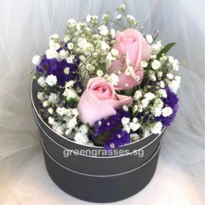 SCBX02039-Self Collect-RDB-2 Pk Roses in Box