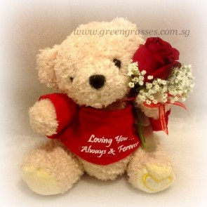 "SCV03048-Self Collect-7"" Red T-Bear with a Red Rose"