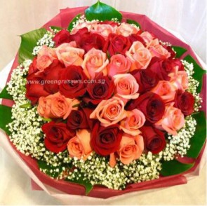 SCV23722-Self Collect-LLGRW-36 Rose(Red+Pk)
