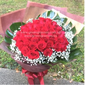SCV28533-Self Collect-LLGRW-48 Red Rose