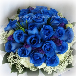 SCV42510-Self Collect-LLGRW-24 Ecuador Blue Rose